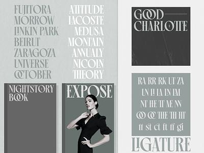 Pherome Display Font illustration simple flat minimalist logo designs display fonts brand mark type wordmark lettering typeface typogaphy display type display font font
