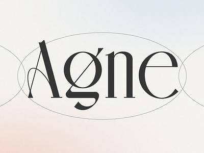 AGNE Display Font type typeface illustration lettering display font branding minimalist modern logo designs logo font
