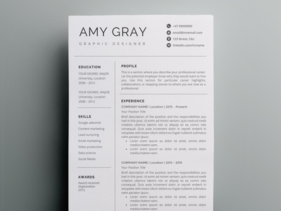 Professional resume template / CV