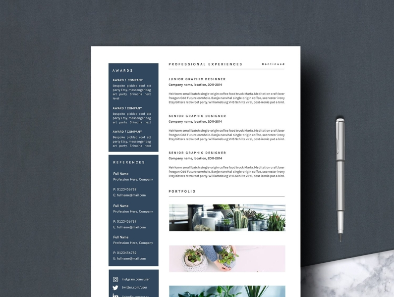 Professional Resume Template Z By Resume Templates On Dribbble