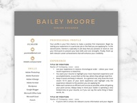 CV Template/Resume - Bailey