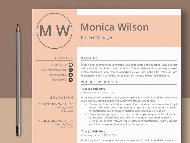 Professional Resume Template curriculum vitae template clean resume creative resume professional modern resume cv template modern resume resume template