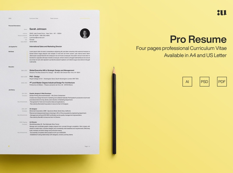Pro Resume Template cv curriculum vitae template clean resume creative resume professional modern resume cv template modern resume resume template