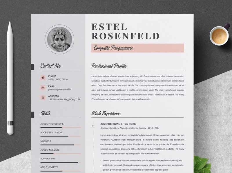 Professional Resume Template download mockup free download cv curriculum vitae template clean resume creative resume professional modern resume cv template modern resume resume template