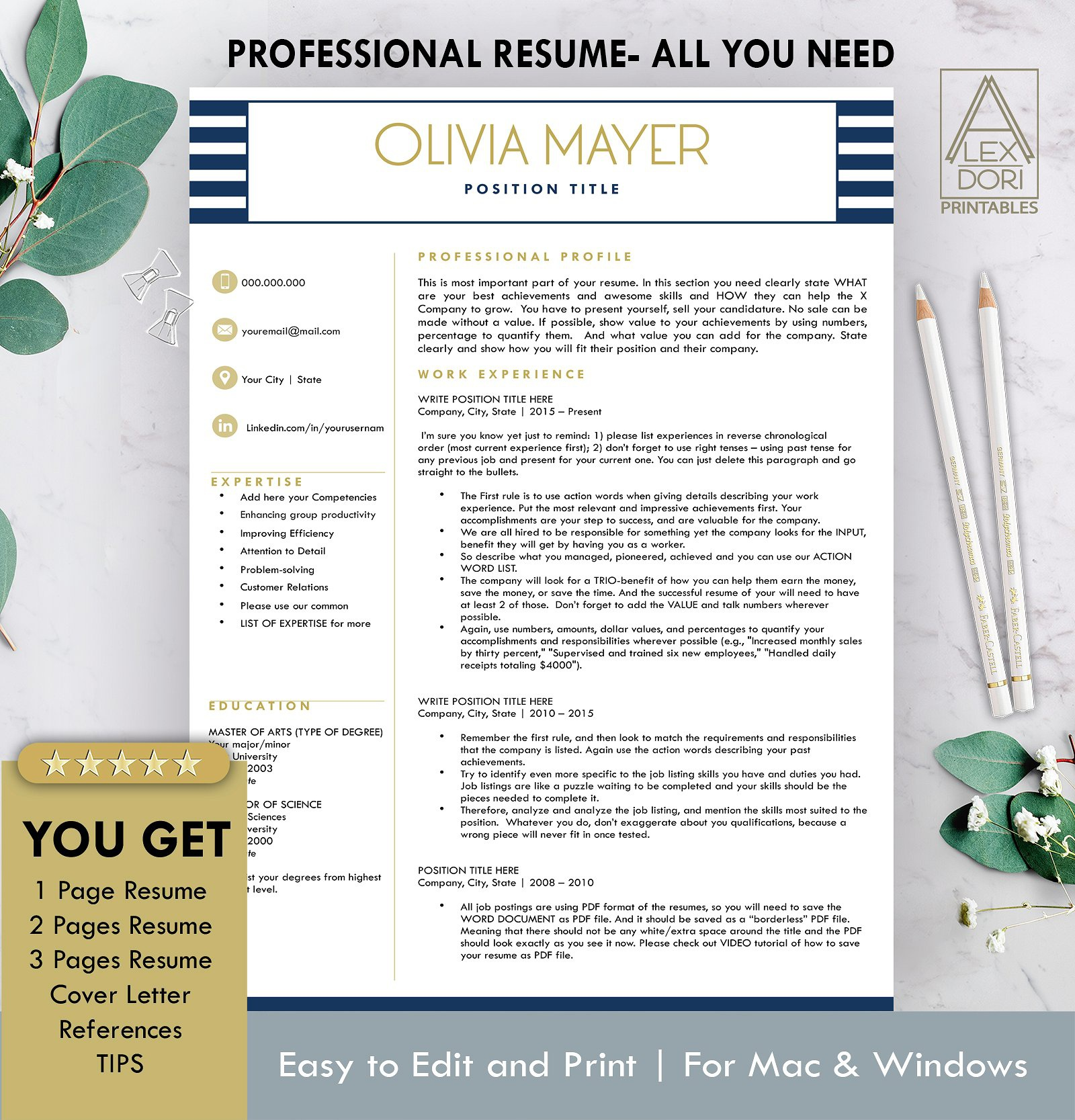 Resume Template In Blue Stripes