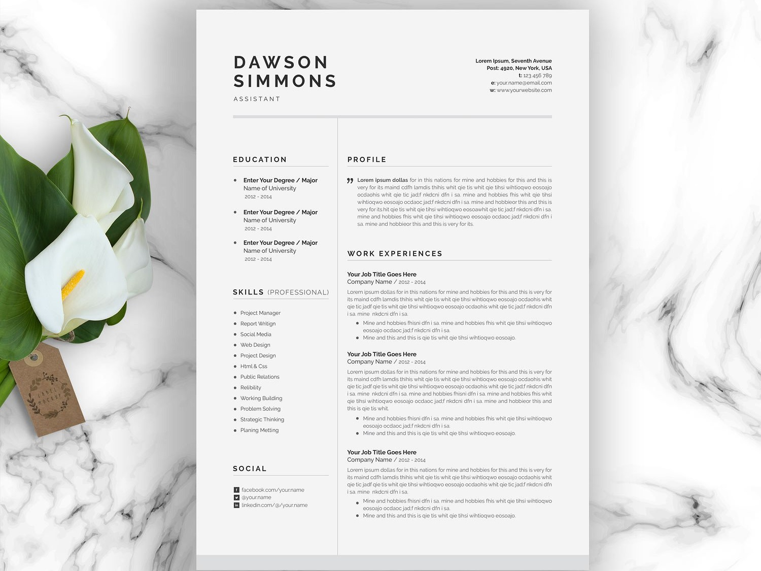 Resume Template 3 Page Cv Template By Resume Templates On Dribbble