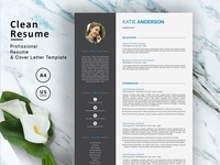 Resume Template (3 Pages)