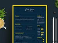 Dark Minimal Resume / CV