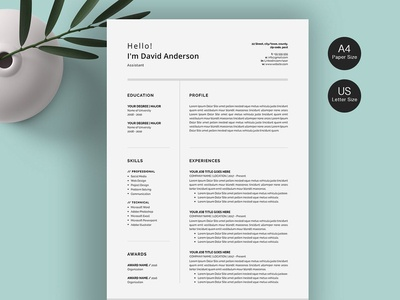 Professional Resume/CV