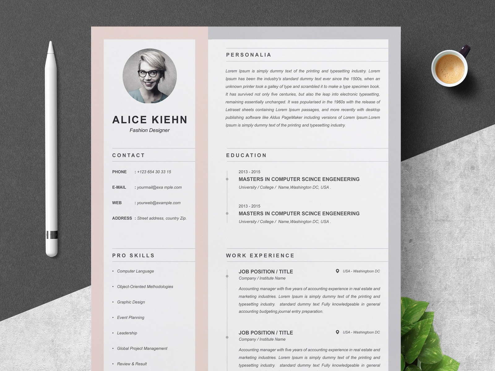 professional resume    cv template by resume templates on