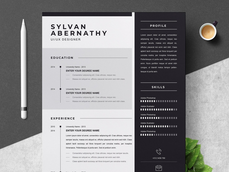 Professional Resume Cv Template By Resume Templates On Dribbble