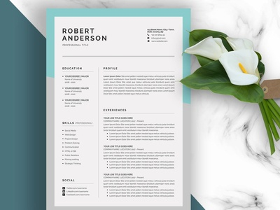 Resume/CV (3 Pages)