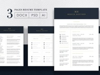 3 Pages Elegant Resume/CV Template M