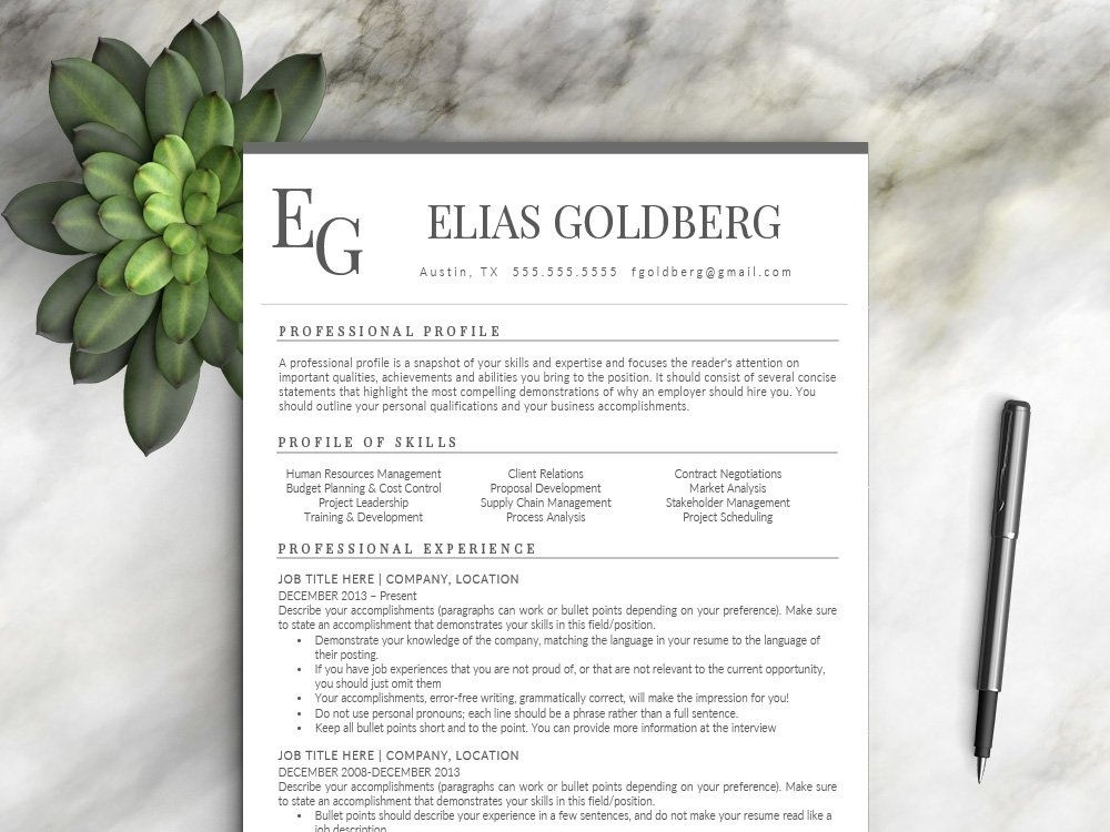Professional Resume Template By Resume Templates On Dribbble