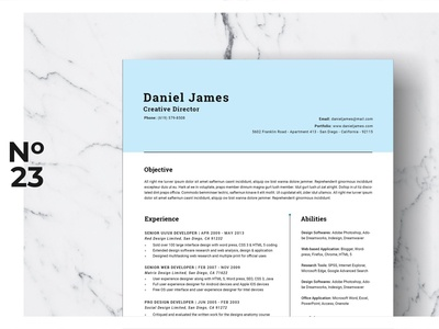 Resume Template Vol. 02