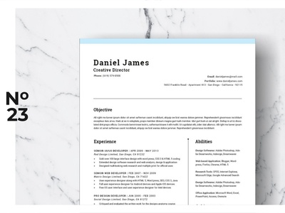 Resume Template Vol. 03