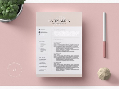 Clean Minimal Resume Template Word