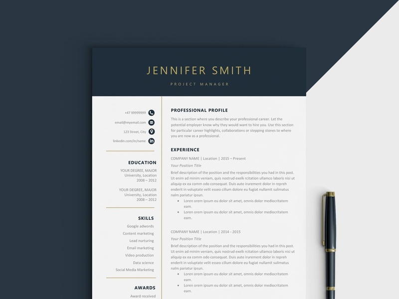 Cv Resume Template By Resume Templates On Dribbble