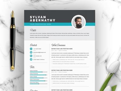 Clean CV / Word Resume Template