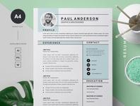 Microsoft Word Resume / CV