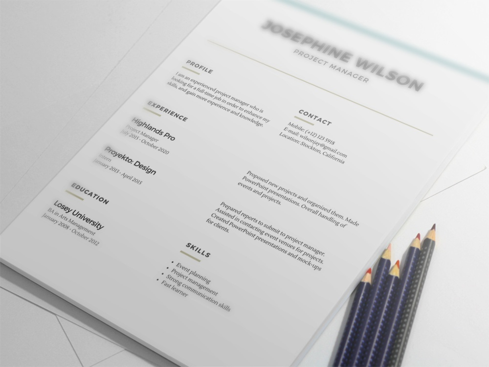 free minimalist resume template with lines accents by