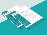Free Modern Designer CV Template