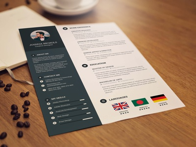 Free Resume Template for Professional