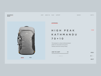 E-commerce Concept / Backpack Shop