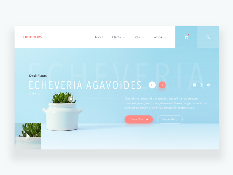 Outdoors Landing Page UI landing page website clean plant plants typography ux dribbble color flat minimal graphic icon design ui