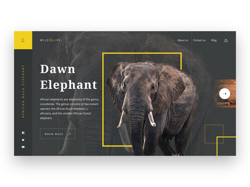 WildLife Webpage UI illustration dribbble minimal graphic website design wildlife elephant animal landing page webpage website design ui