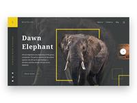 WildLife Webpage UI