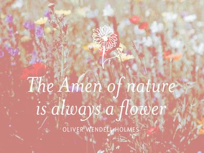 Amen of Nature