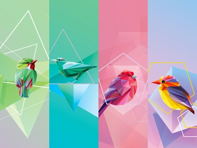 Geometric birds collection graphic resources low polygon collection vector illustrations colors seasons nature wildlife birds geometric