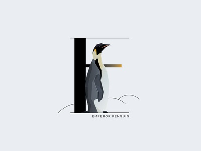 E For Emperor Penguin drop cap letter initial letter letter e emperor penguin insignia symbol minimal typography illustration vector wildlife animal