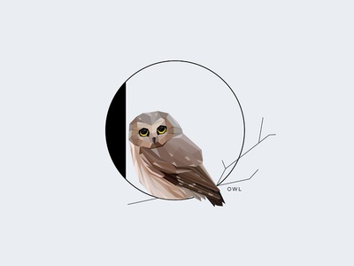 O For Owl initial letter letter o pygmy owl minimalism type illustration vector symbol insignia typography wildlife animal