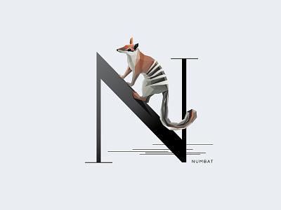 N For Numbat letter n type insignia symbol illustration vector typography wildlife animal anteater australia numbat
