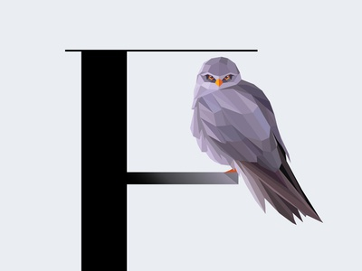 F For Falcon initial letter letter f feathers wildlife vector illustration symbol geometric bird falcon typography type
