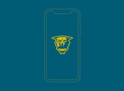 Bearcat Icon
