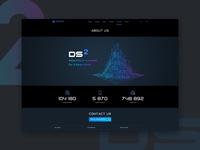 Ds Website