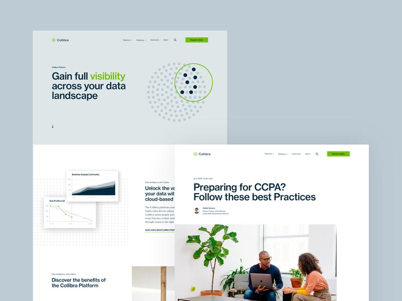 Collibra Website illustration web branding design rebrand