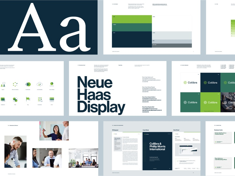 Collibra Brand Guidelines illustration typography branding design rebrand