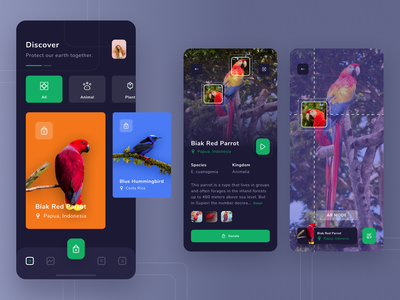 Birday - Animal Conservation App ux support charity donate conservations earth animal apps ui iphone x app design