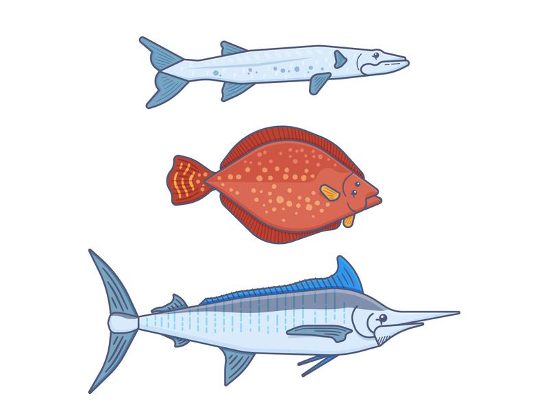 Fishes wildlife ocean life sea life branded character fishing baracoda flounder marlin fish