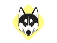Luna Dog