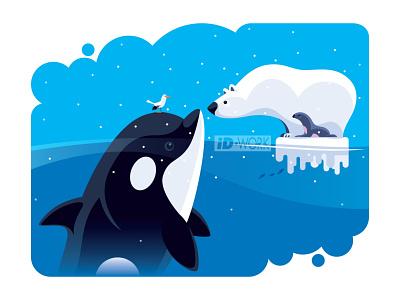 polar bear communicating with orca vectorillustration vectorgraphics vectorart vector artwork vector sea creatures polar bear orca illustrator illustration graphics graphicart graphic design digitaldrawing design character art character cartoon art