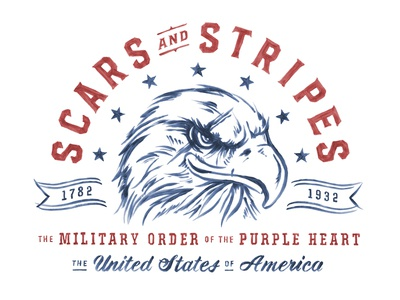 Scars & Stripes veteran soldier wounded pride usa heart purple military stars hand-painted scar eagle