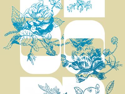 Bloom Poster typography flowers illustration leaf leaves rose scholarship spring feminine garden flowers floral poster bloom