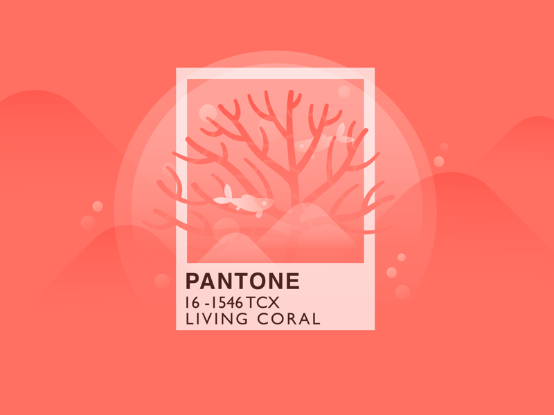 pantone color of the year 2019 by dana dribbble dribbble. Black Bedroom Furniture Sets. Home Design Ideas