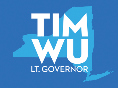 Tim Wu for Lt. Governor political ny campaign logo politician election vote