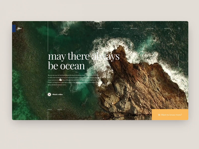 Daily Inspiration 34 beach ocean sea drone minimalistic clean carousel grid layout animation grid adobe xd big background images ui interaction interaction web ui daily inspire